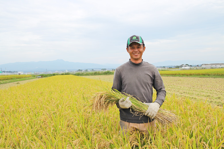 冨田自然栽培米の収獲