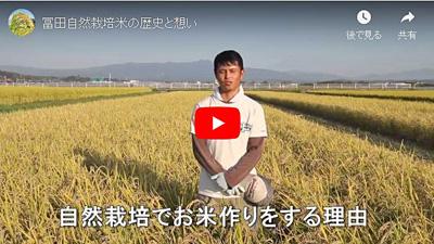 冨田自然栽培米の歴史と想い