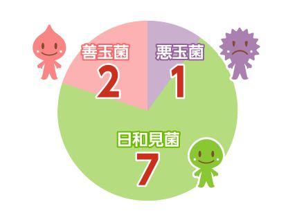 腸内細菌割合