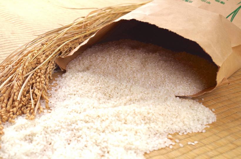 自然栽培米ならアレルギーの方でも安心して召し上がれます