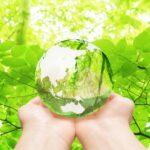 自然栽培米から得られる生命力と免疫力-自然のエネルギー