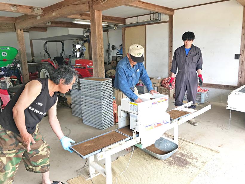 井手上自然栽培米播種