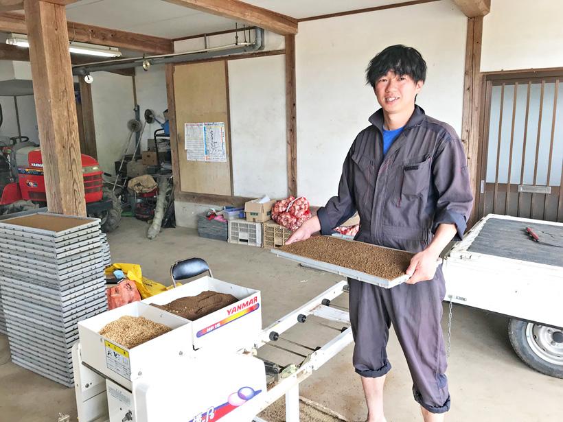 井手上自然栽培米播種作業