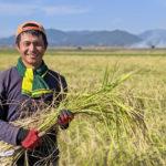 親から子へ受け継がれる「冨田自然栽培米」