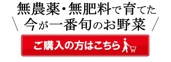 冨田自然栽培米野菜ご購入はこちら