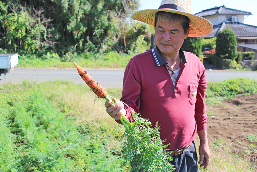 冨田自然栽培米にんじん収穫
