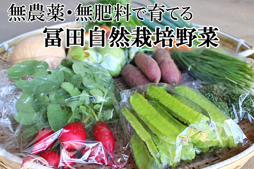 冨田自然栽培野菜