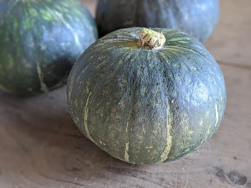 冨田自然栽培かぼちゃ(くりゆたか)