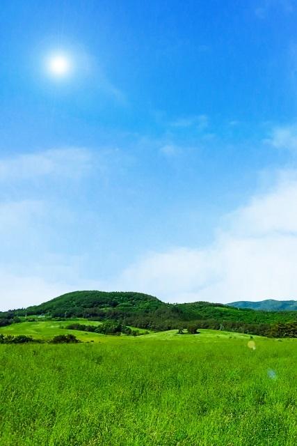 太陽と草原