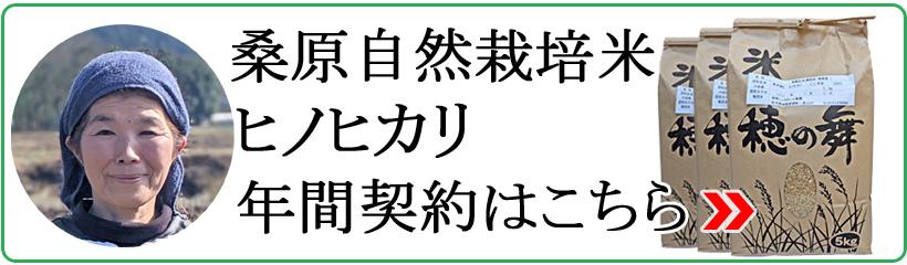 桑原自然栽培米ヒノヒカリ年間契約
