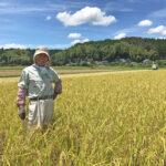 地球温暖化が進んでいる⁉【免疫力】をあげる【古代米・雑穀米】