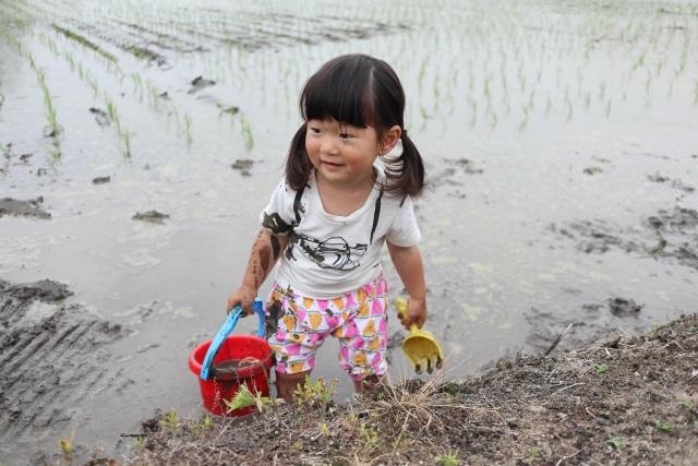 田植えを通して体験する【食育】-泥んこになる子どもたち!
