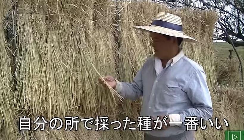 冨田さん自家採取インタビュー