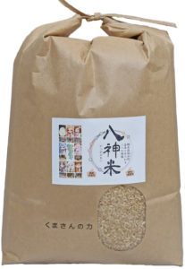菅原自然栽培米くまさんの力