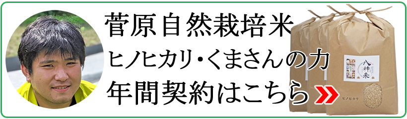 菅原自然栽培米年間契約