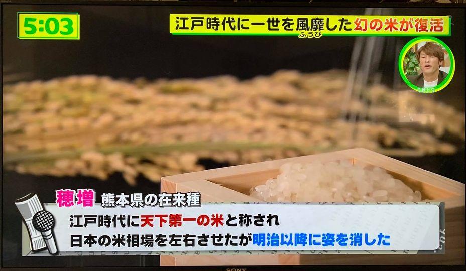 テレビ-3
