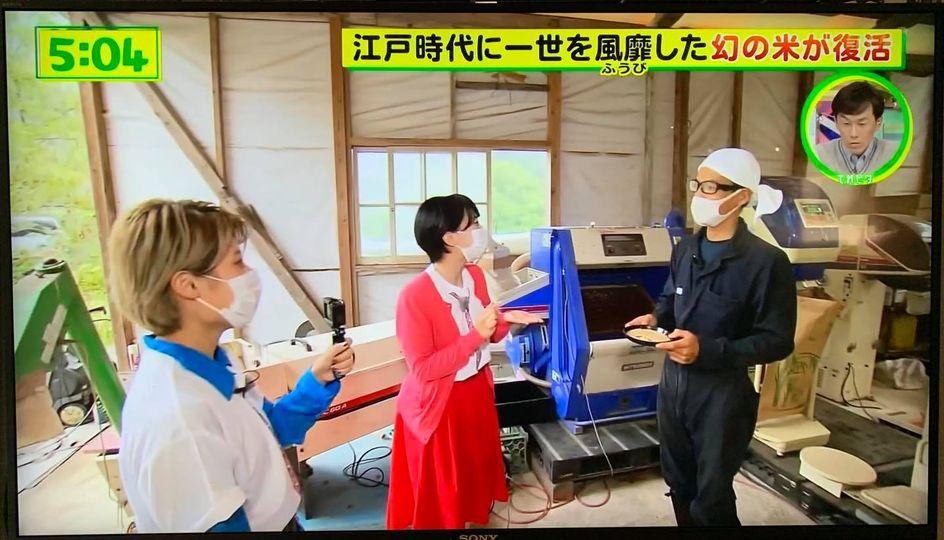 テレビ-2