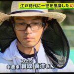 【在来種米】って何?自然栽培農家:みとりさん、情報番組に出演!