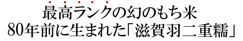 筋田自然栽培もち米説明