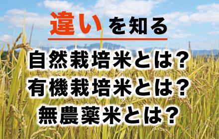 自然栽培米、有機栽培米、無農薬米の違い