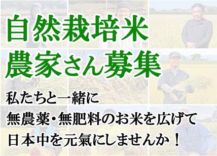 自然栽培米農家さん募集