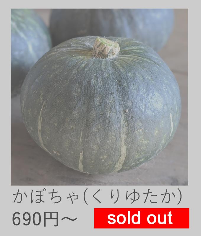 自然栽培かぼちゃ売切れ