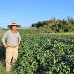無農薬米作りを決心した理由|無農薬栽培歴40年以上の冨田親由