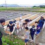 自然栽培米の苗作りの課題|冨田自然栽培米「菊池の輝き」・ヒノヒカリ